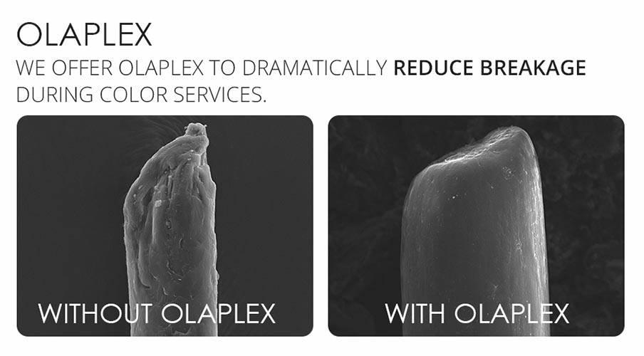 olaplex breakage