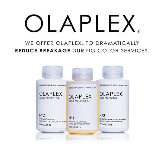olaplex multipler