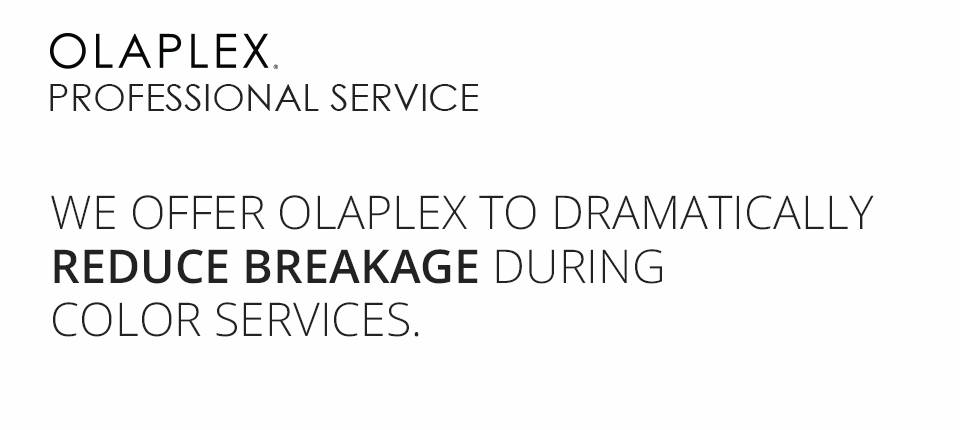 opalex description 2