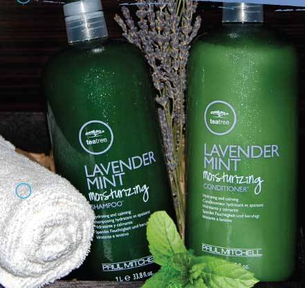 t3 shampoo and conditioner
